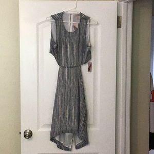 Navy/blush Forever 21 dress